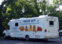 The Rascal Unit truck